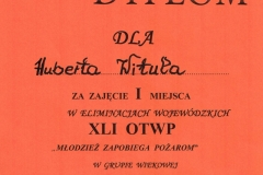 dyplom Hubert Wituła OTWP